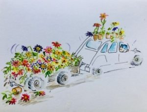 Watercolour cartoon CV full of dahlias