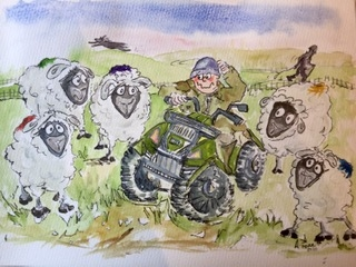 Tales of Farmer Paterson Moffat, cartoon sheep