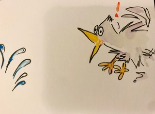 cartoon animals bird alert